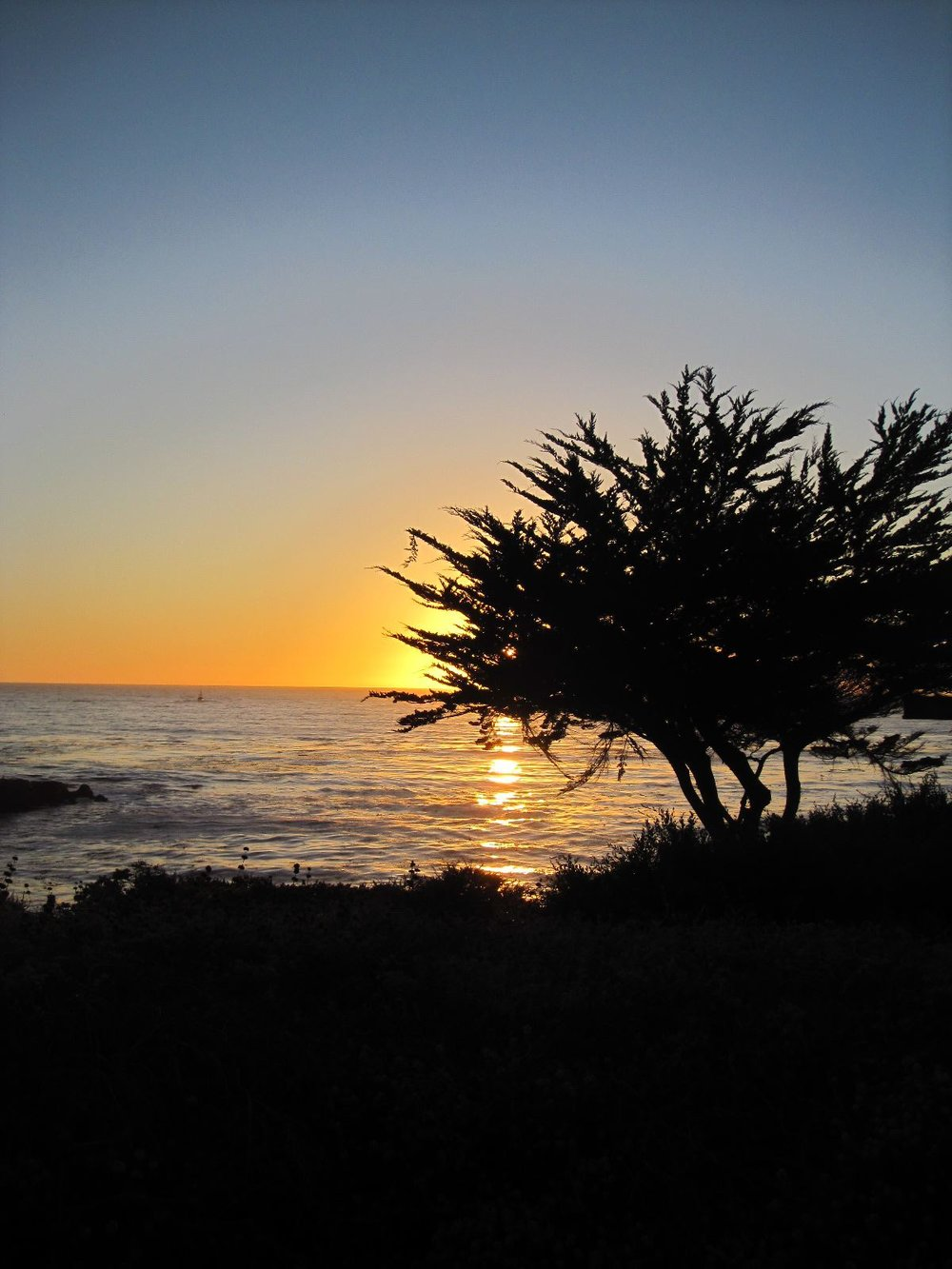 sunset carmel bay.jpg