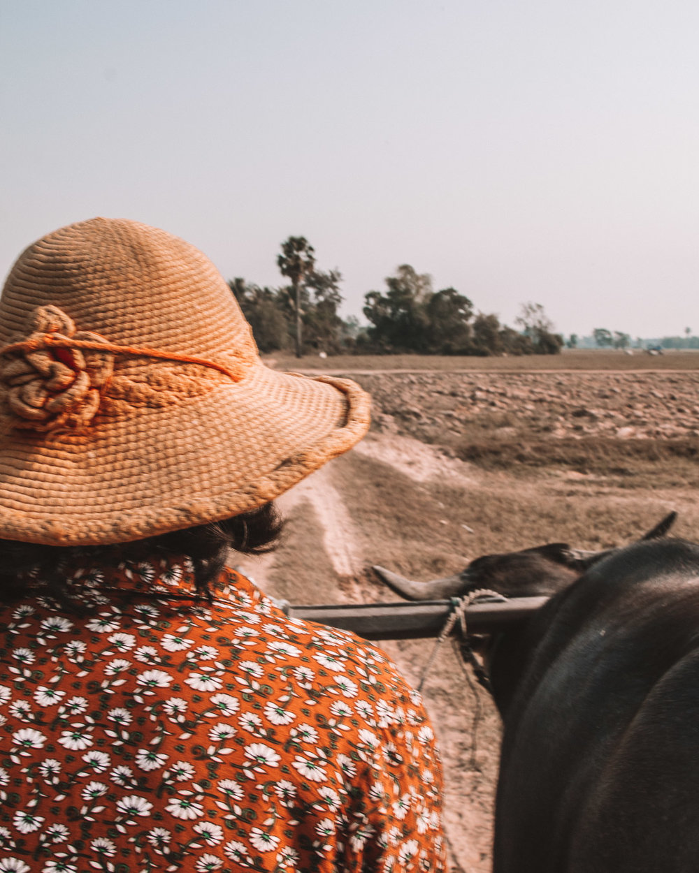 culture tradition cambodia
