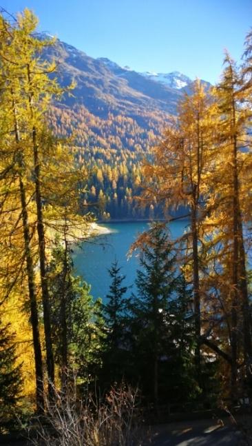 Herbstreminiszenz.jpg