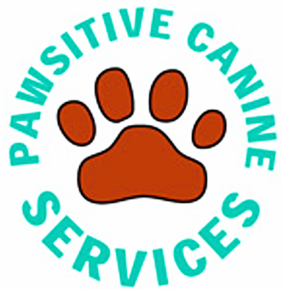 Pawsitive Canine Services | Dog Walkers | Central Scotland |  Microchipping | Doggy Daycare | Petsitting | Pet Taxi