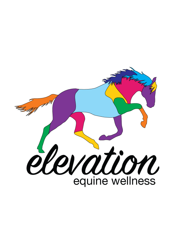 Elevation Equine Bodywork