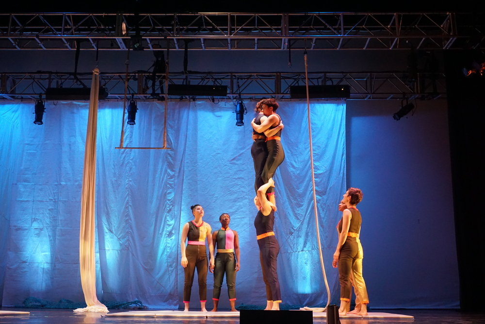 Acrobatics in Brooklyn Undo The Patriarchy