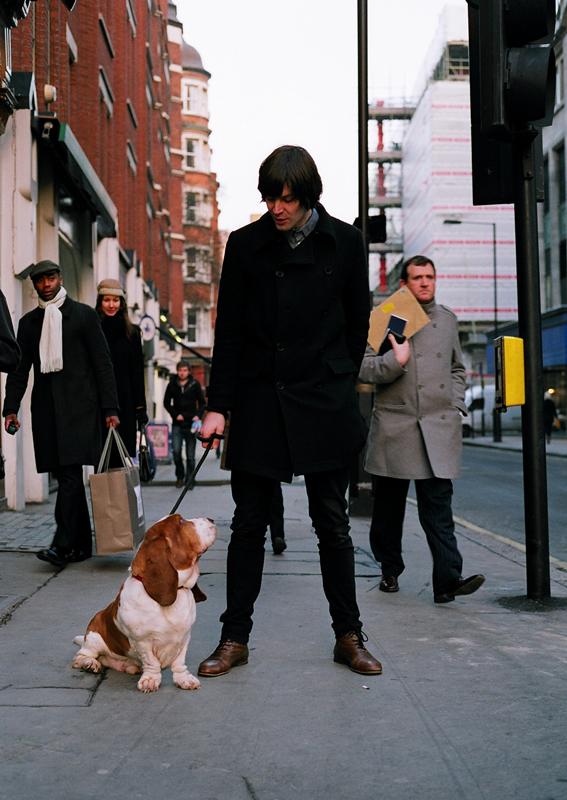 dogs5.jpg