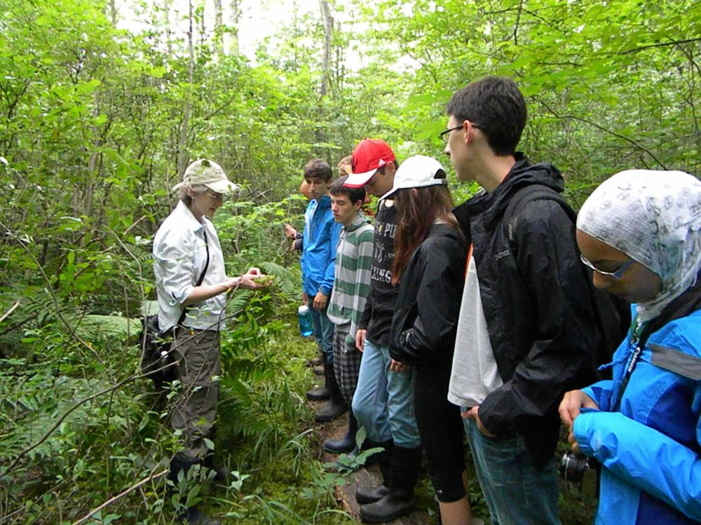 ESSYI students exploring biodiversity in a nearby bog.