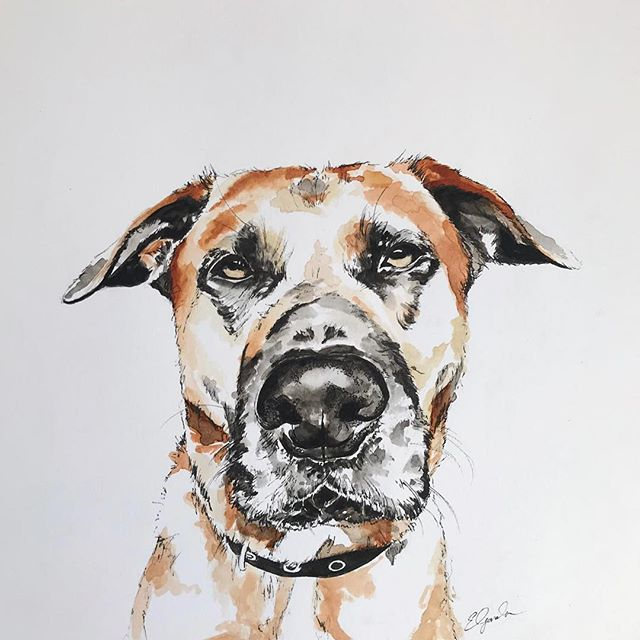 Birthday commission! Meet Bertie. (29.7cm x 29.7cm watercolour & fine liner) Thank-you @nicolewilford