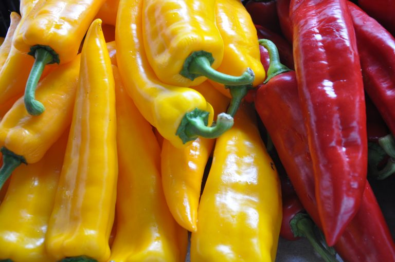ss-farmers-market-2.jpg