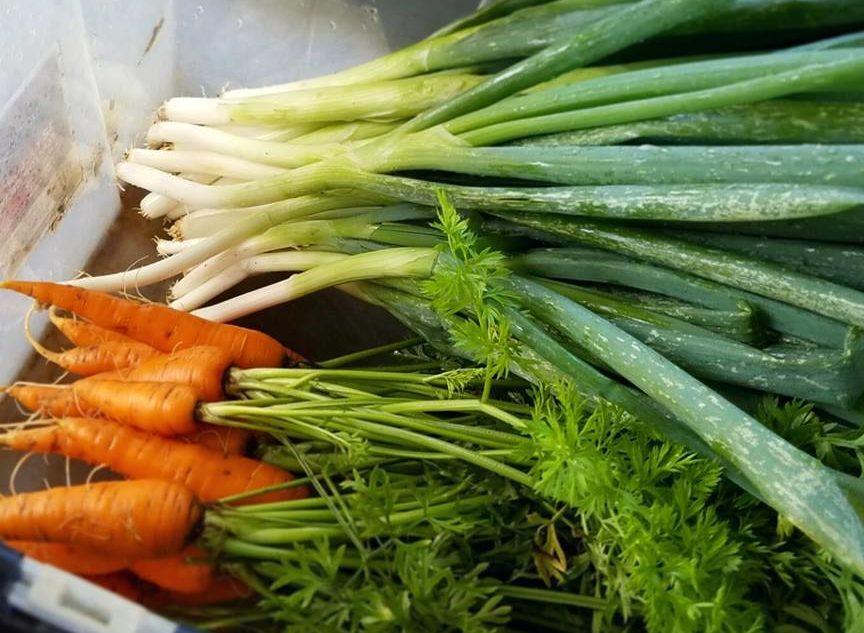 farmers-market-9.jpg