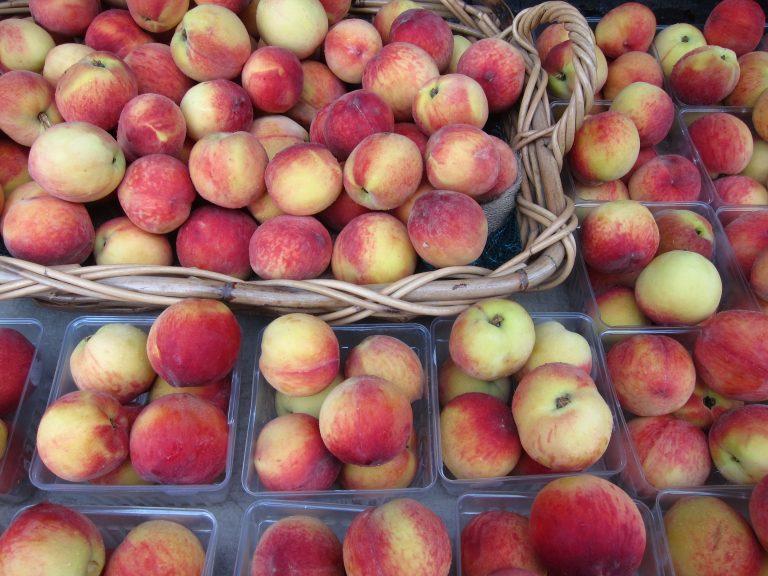 farmers-market-10.jpg