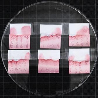 DNA Printing