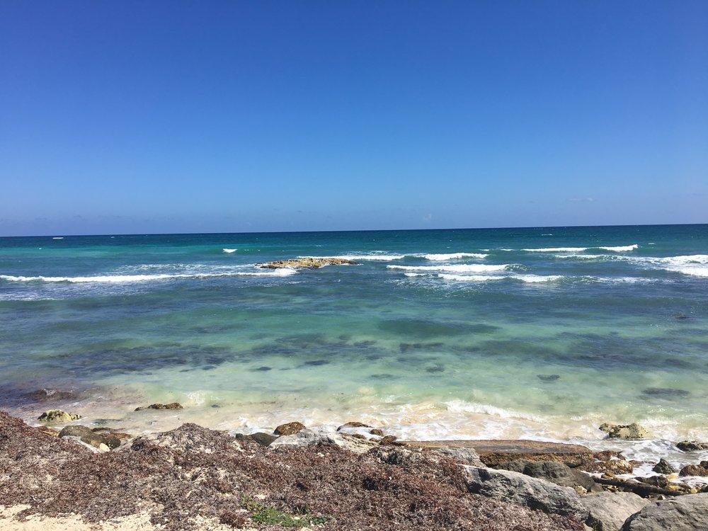 Tulum shore.jpg
