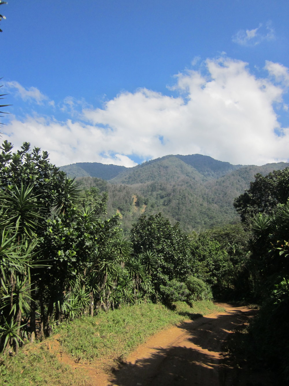 Looking up at the north end of the Comayagua Mountain Range in the village of Rio Negro.