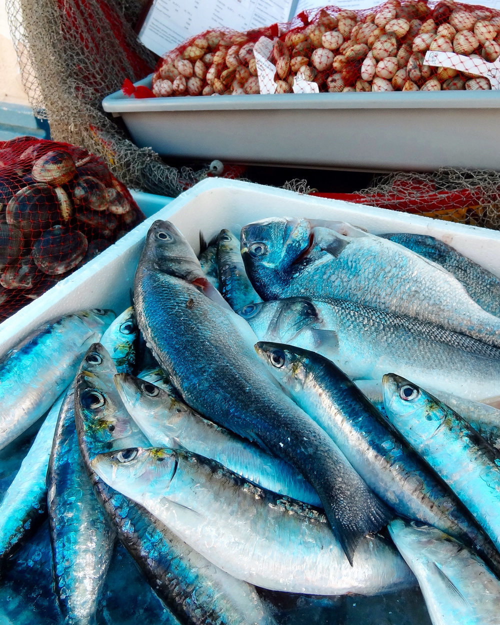 food-nazare-bluefish.jpg