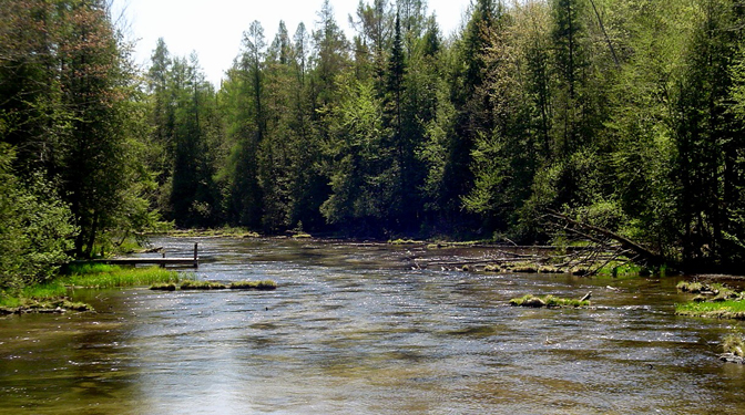 Northern Michigan Riverfront Property Pine River