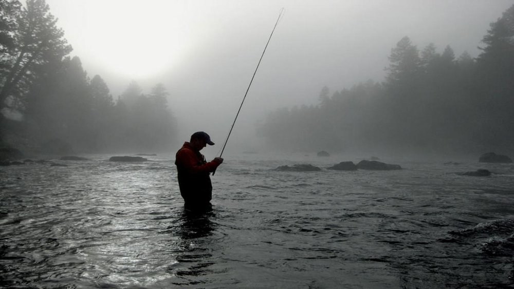 379150-fly-fishing-1280x720.jpg