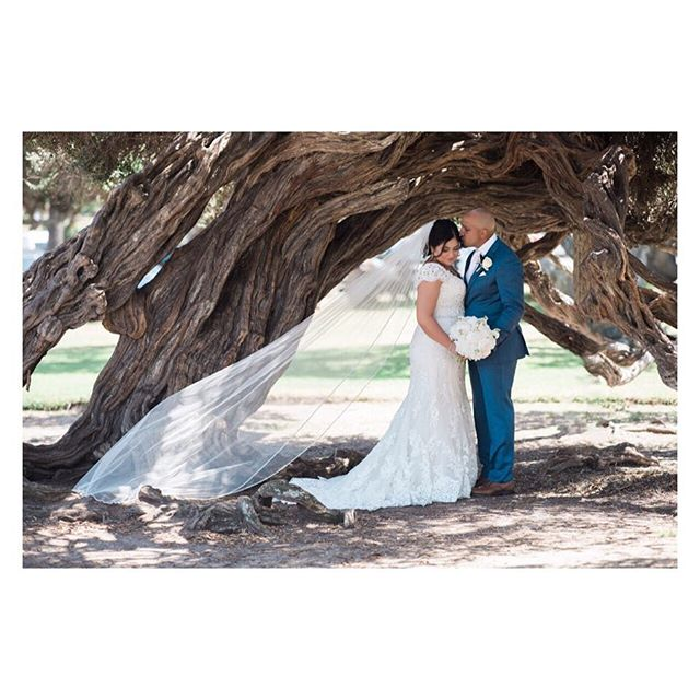Ghazal and Amer wedding ♥️ beautiful shot by @belluxephotography . . . . #californiaweddingplanner #wedluxe #ocweddingplanner #orangecountyweddingplanner #vancouverweddingplanner #weddingphoto #italianwedding #persianwedding #gardenwedding #persianitalianwedding #rusticwedding #greenwedding #organicwedding #vancouverpersianweddingplanner #orangecountypersianweddingplanner #vencouverwedding #vancouverweddings #vancouverluxurywedding #persianweddingplanner #detailsbyhaleh #happywedding