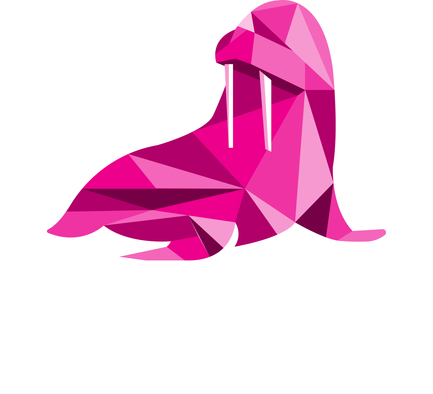 Mooki Entertainment