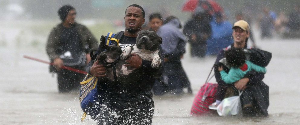 hurricane-harvey-wading-out-rt-ps-170828_12x5_992.jpg