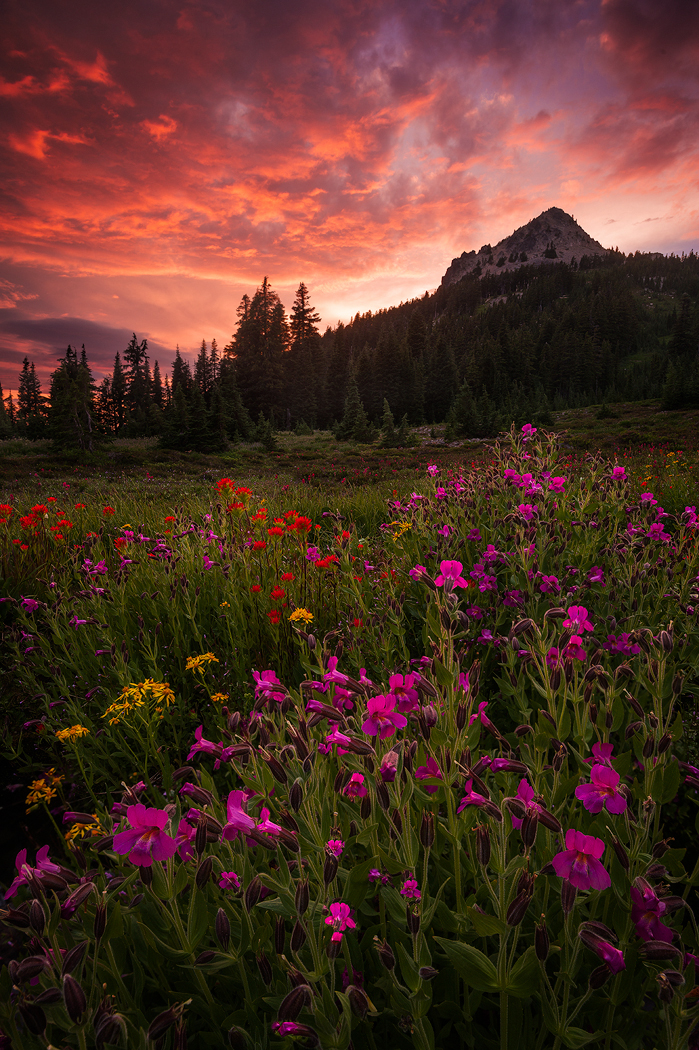 Mount Jefferson Wilderness, Oregon