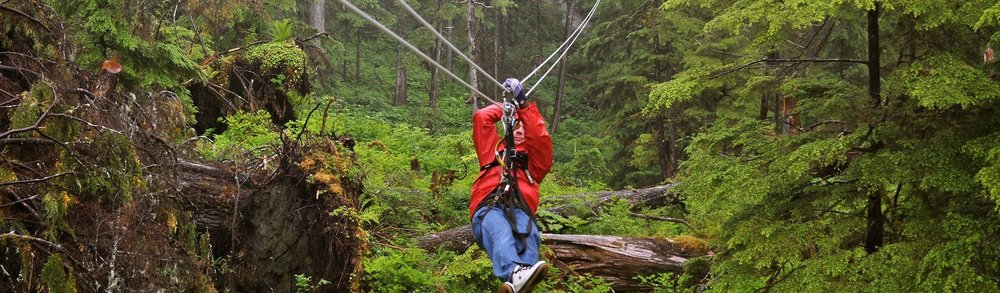 The Oyama Zipline Adventure Park   Included in this Experience
