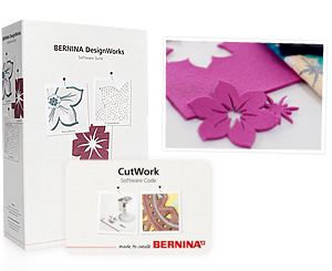 Bernina DesignWorks Software with CutWork