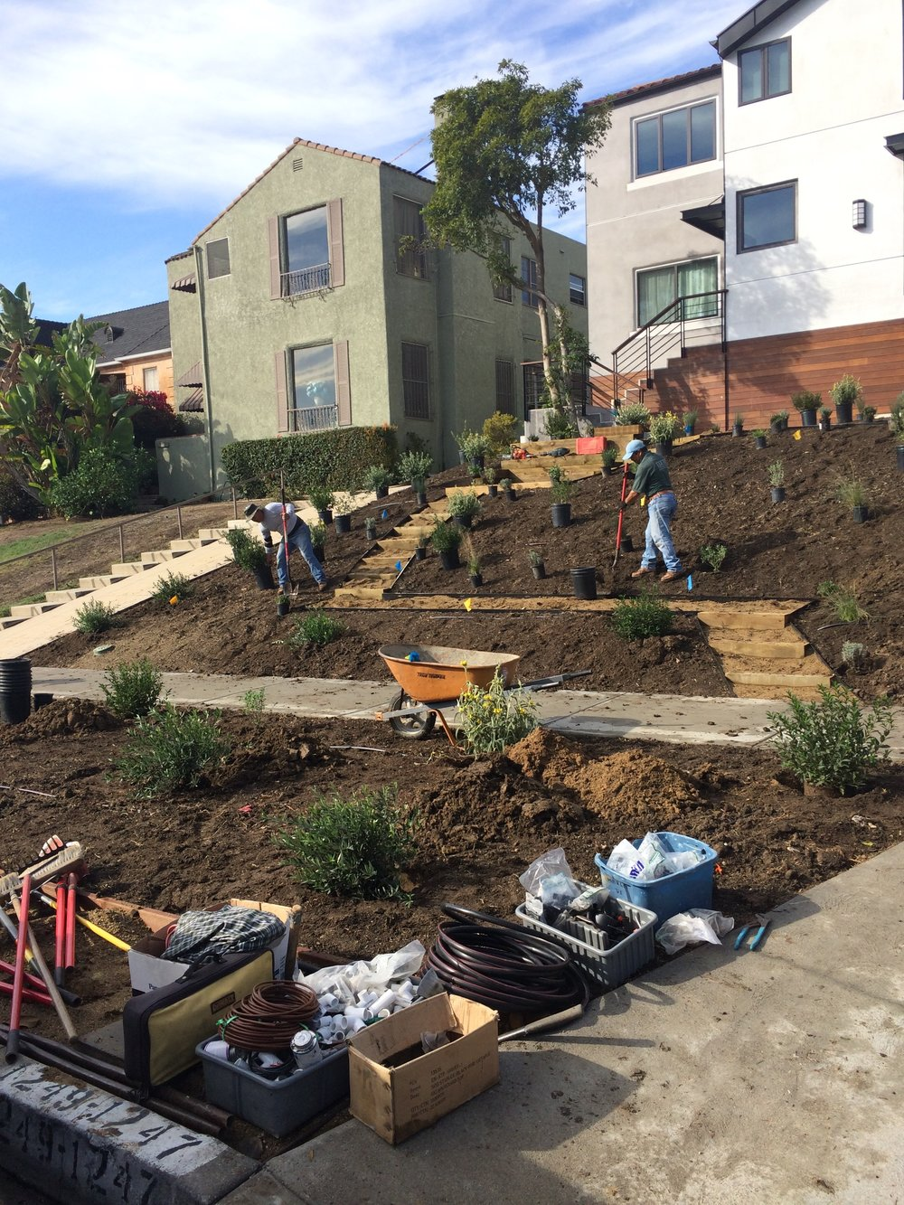 Out with the grass and in with the native garden at a duplex in Mid-City.