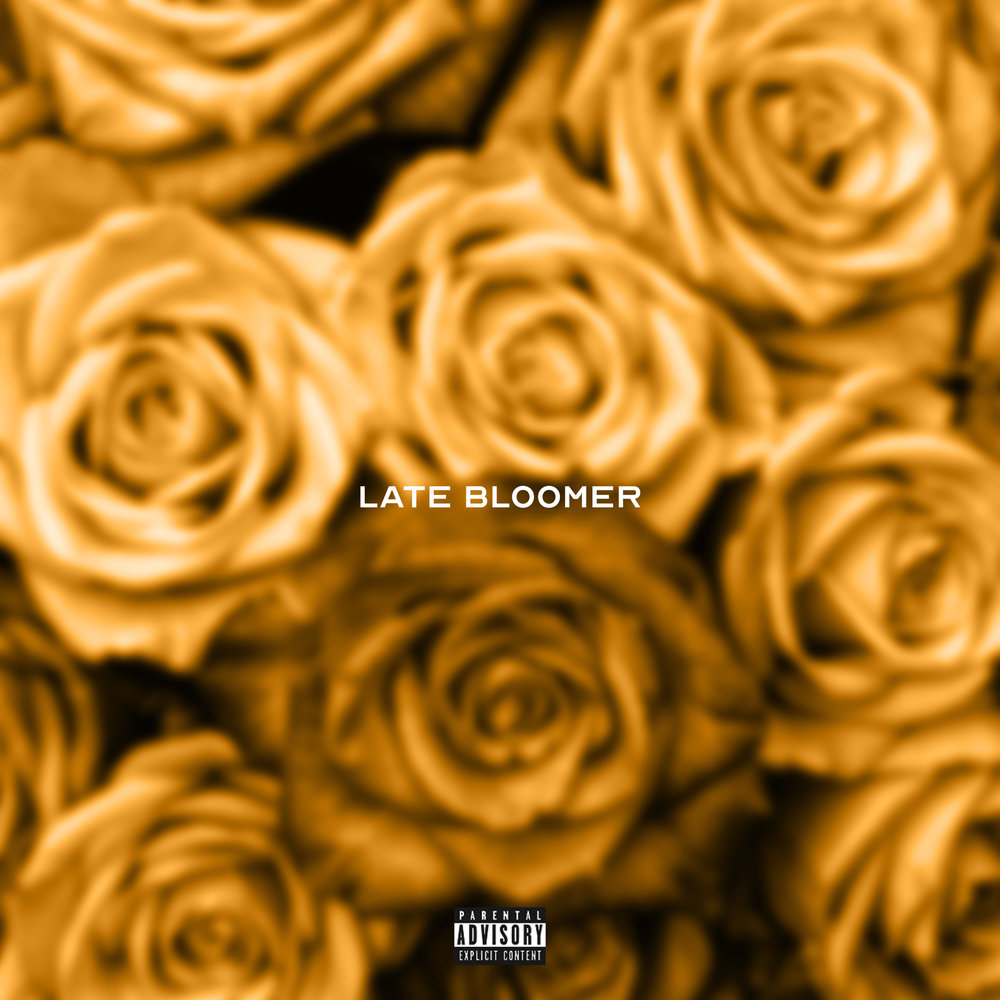 LATE BLOOMER NOW STREAMING ON ALL PLATFORMS!