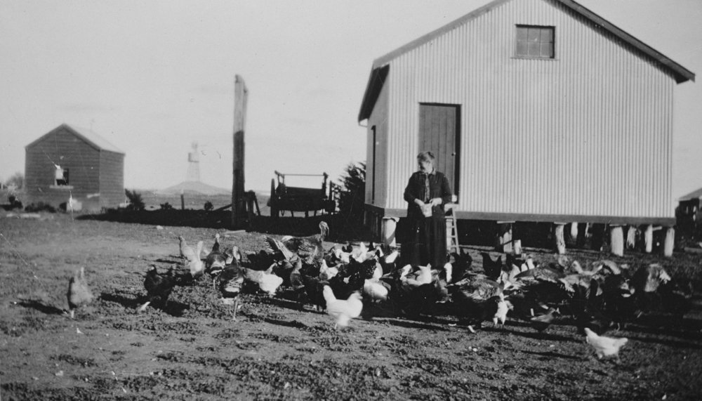 Title:   A Woman Feeding Poultry,  Agriculture, Dimboola District, Victoria, 1926: The Biggest Family Album in Australia  Source:  Museums Victoria  Photographer:  Unknown