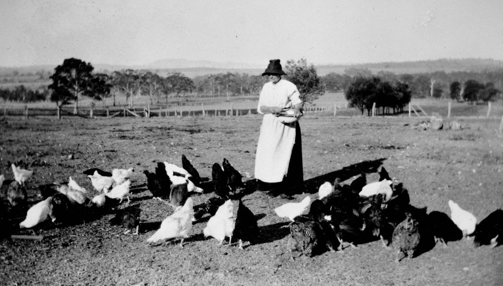 Title:  A Woman Hand Feeding Hens on a Farm, Victoria, circa 1935: The Biggest Family Album in Australia  Source:  Museums Victoria  Photographer:  Unknown