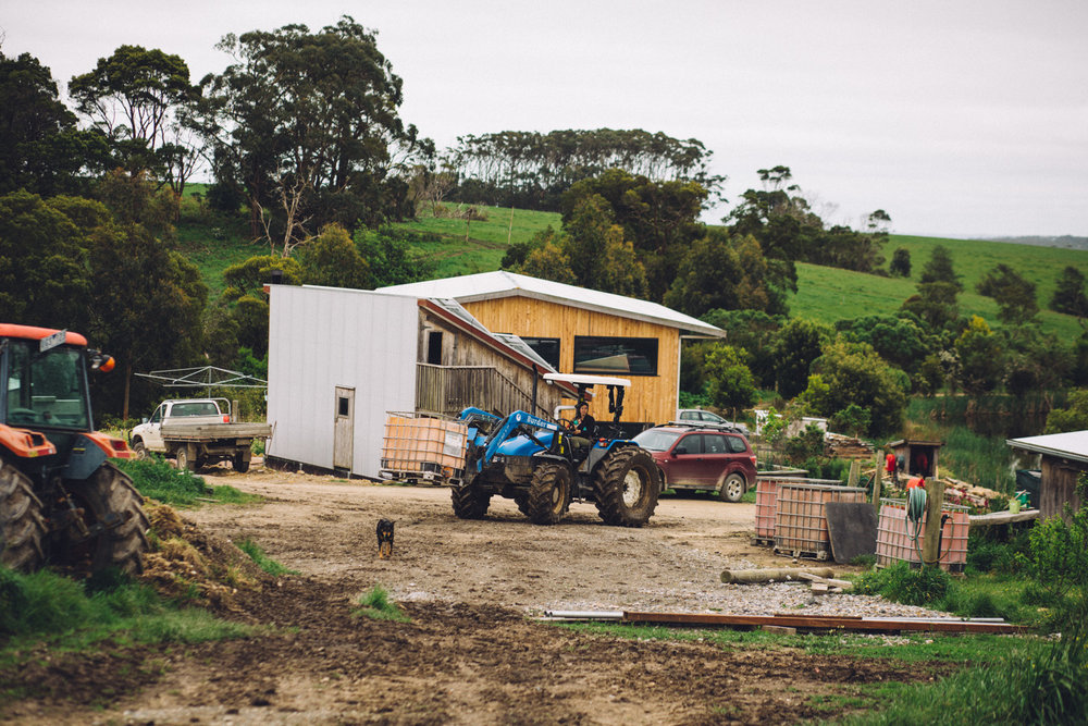 Title:   Amelia Bright driving a tractor in front of her off-grid home (in construction) at Amber Creek Farm , Fish Creek, 2016.  Source:  Museums Victoria  Photographer:  Catherine Forge