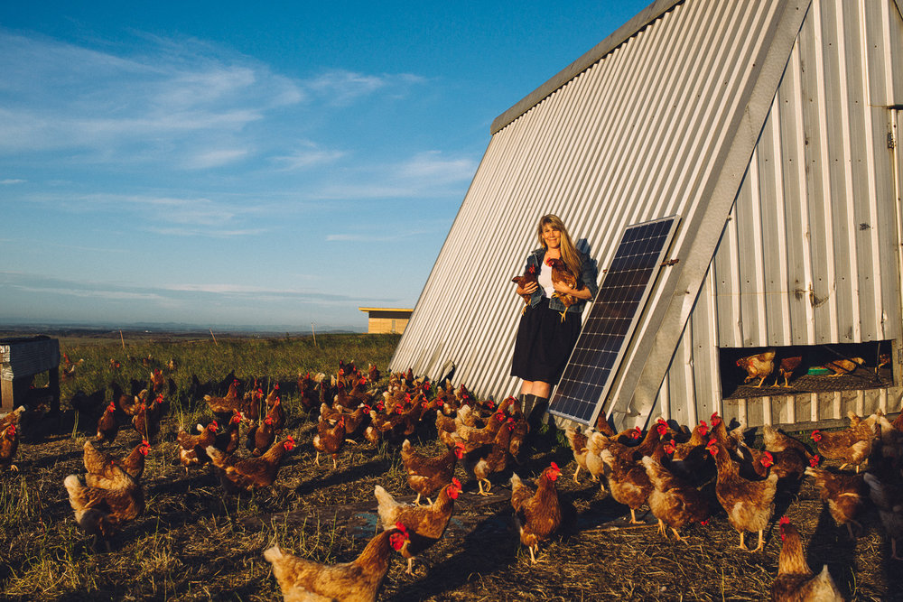 Amy Paul with chickens, Walkerville, South Gippsland, 2016, Source: Museums Victoria, Photographer: Catherine Forge