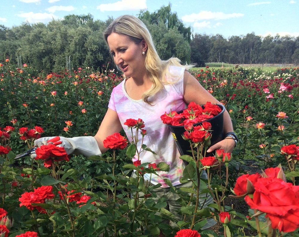 Sarah Sammon of Simply Rose Petals, Swan Hill, image: supplied.