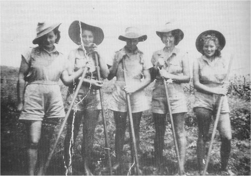 Women's Land Army members at Fowlers Farm in the Burdekin district, c. 1942-1945, Image courtesy OzatWar:  http://www.ozatwar.com/ausarmy/wla.htm