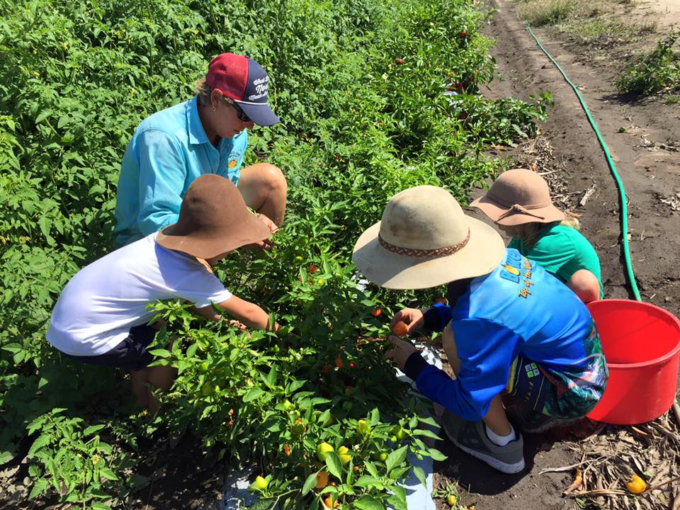 Belinda teaching children farm skills, image supplied (Stackelroth Farms, Facebook)