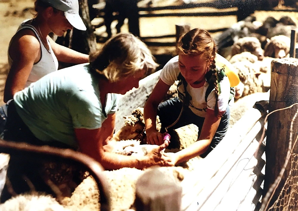 "Mira Galvin (left) with her niece Rachele Spangaro (right) drenching the sheep, ""Coralya"", 1982. Photo: supplied by Aileen Spangaro."