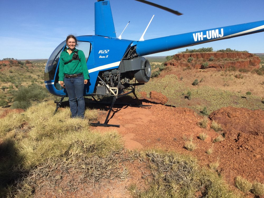 Helicopter mustering whilst working at Inverway Station, Northern Territory, image supplied by Laura Lewis.