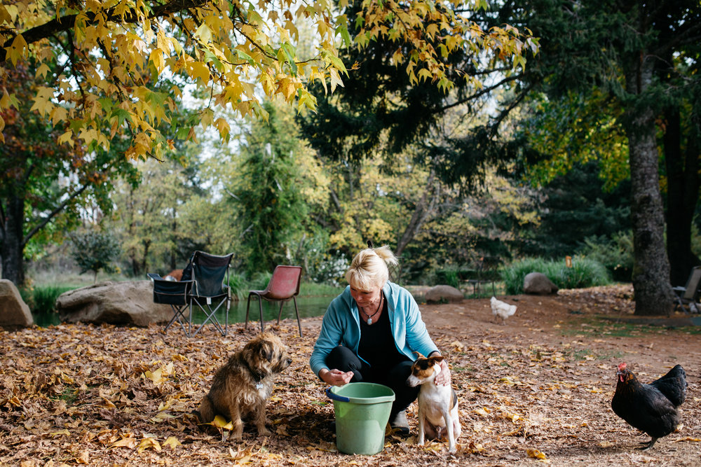 Sally Hall with her dogs and chooks, Mountain Fresh Trout and Salmon Farm, Harrietville (Victoria), 2017, Photographer: Catherine Forge, Source: Museums Victoria.