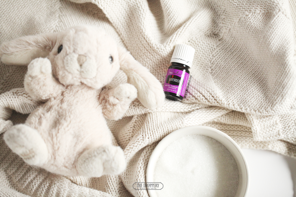 lavenderbunny-website.png