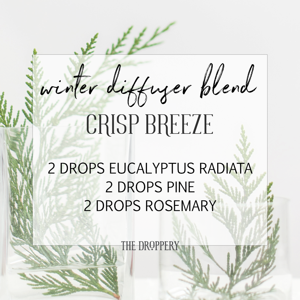 winter_diffuser_blend_crisp_breeze.png