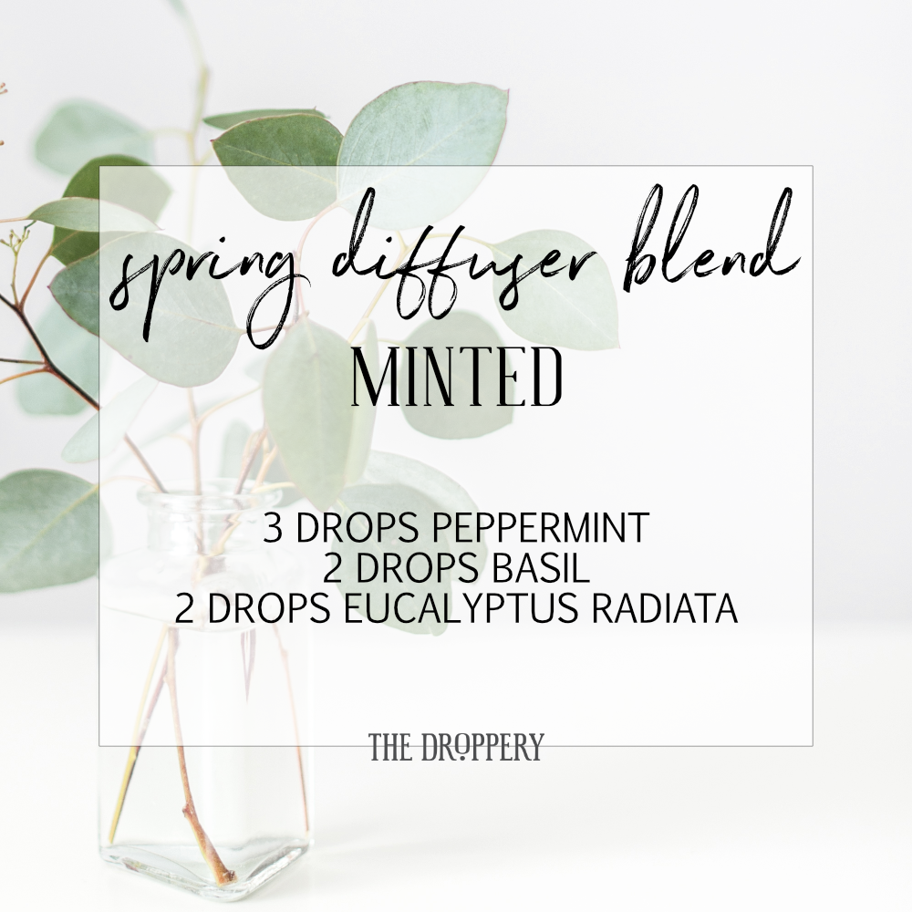 spring_diffuser_blend_minted.png