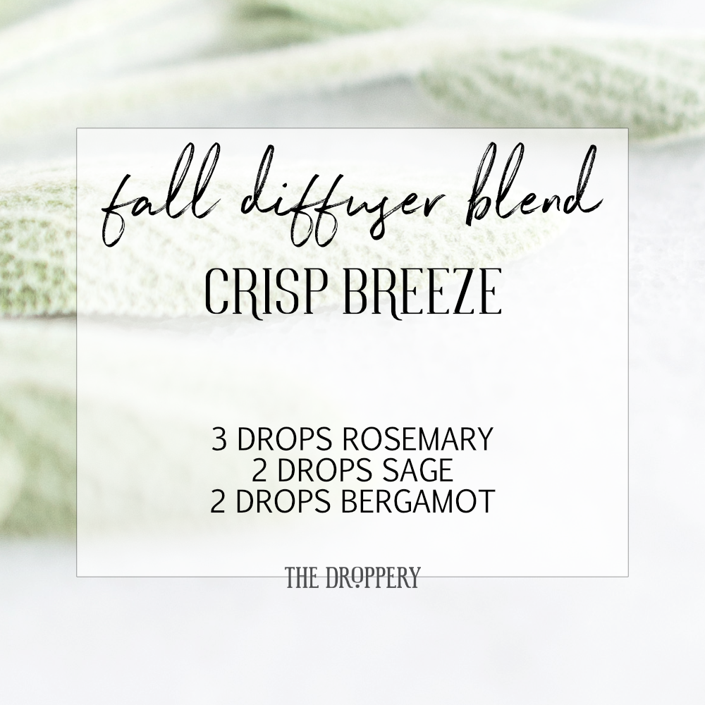 fall_diffuser_blend_crisp breeze.png