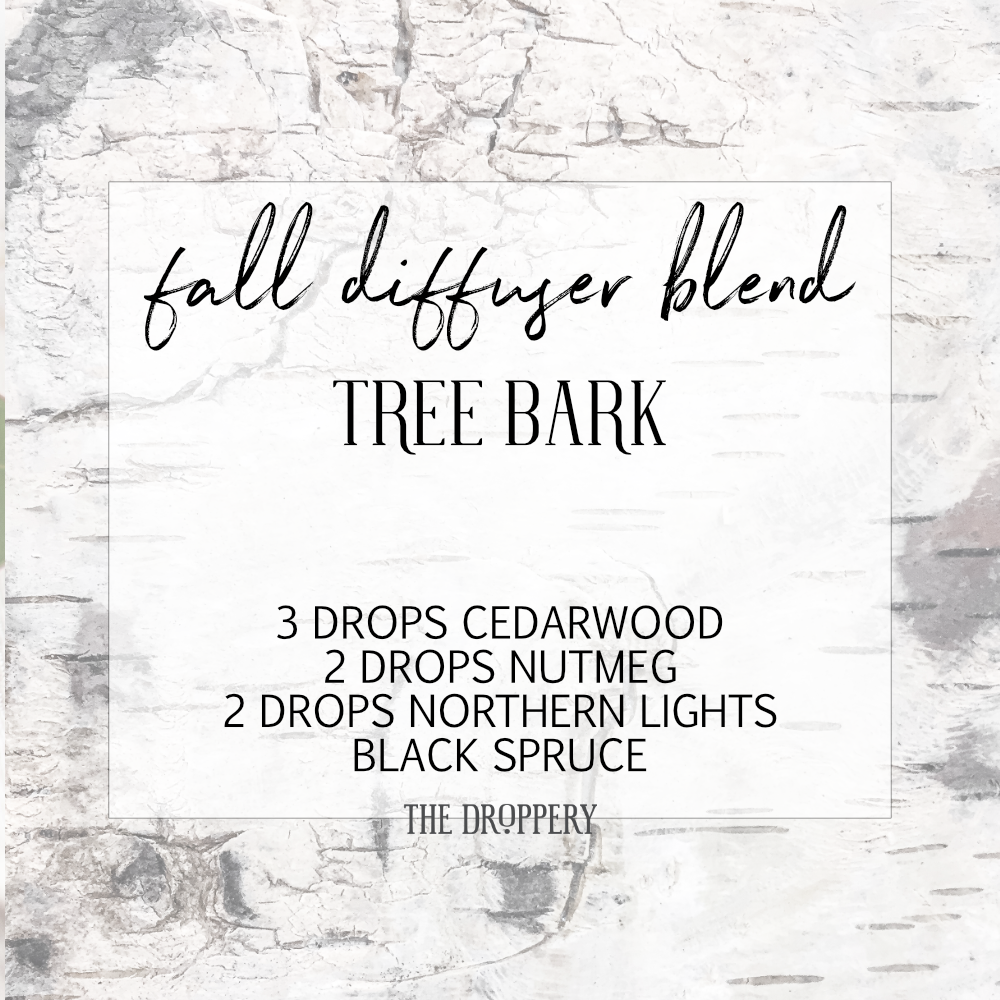 fall_diffuser_blend_tree_bark.png