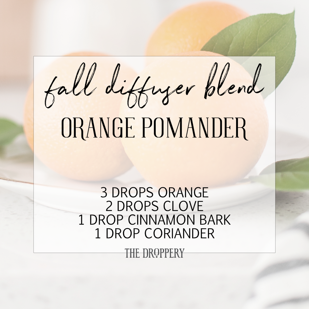 fall_diffuser_blend_orange_pomander.png