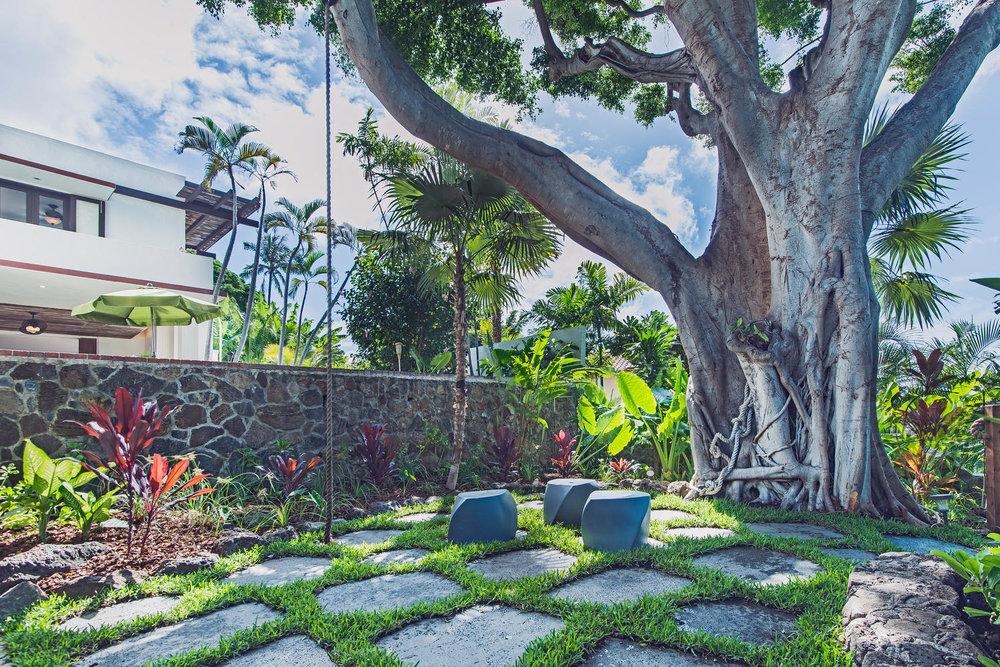 Big Tree Lanai