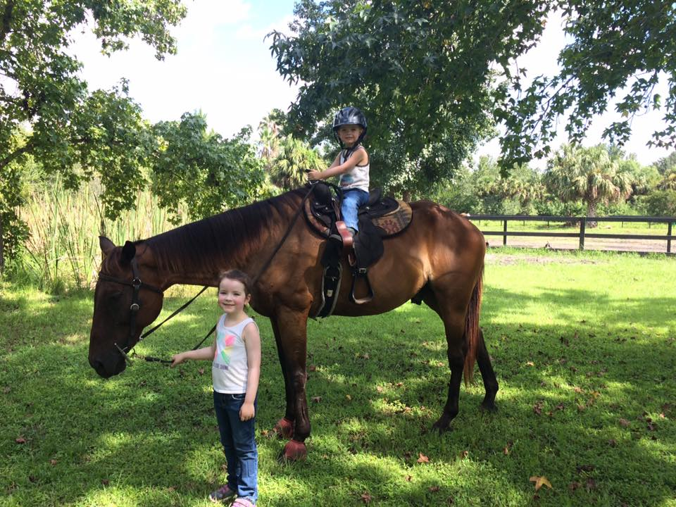 Horse experience .jpg