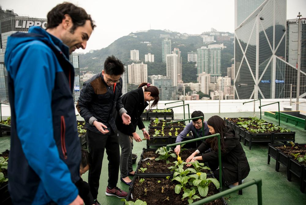 Hong_Kong_2795_Xaume_Olleros_29_Feb_2016_5.jpg