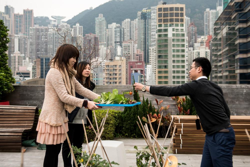 Hong_Kong_2795_Xaume_Olleros_29_Feb_2016_4.jpg