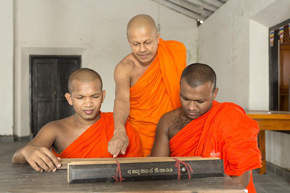 Sri_Lanka_2626_Brett_Davies_20_Feb_2016_2.jpg