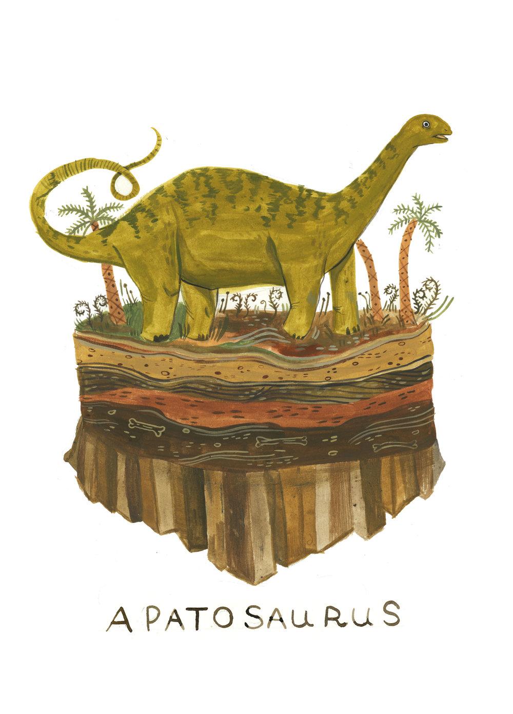apatosaurus (1).jpg