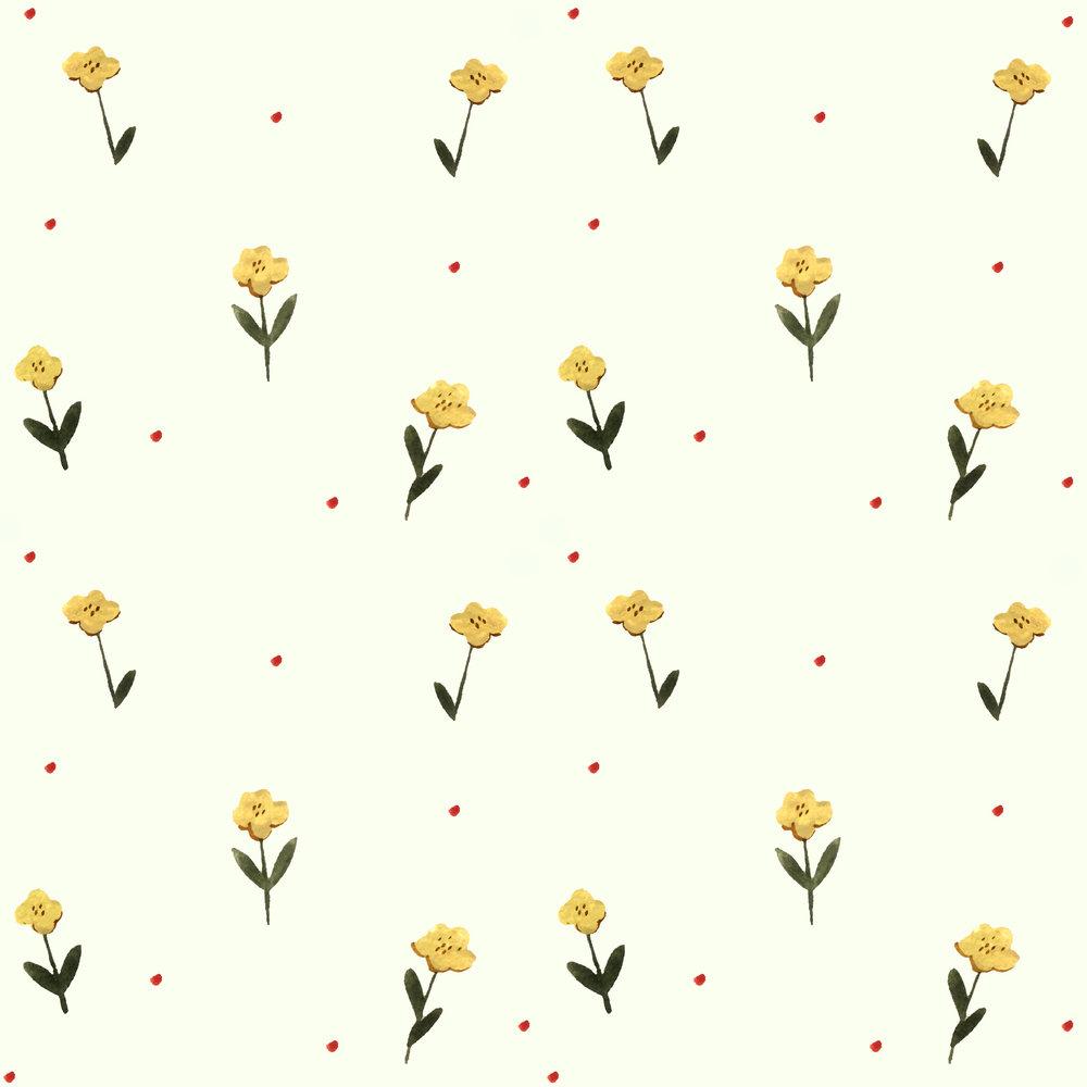 delicateyellowflower.jpg