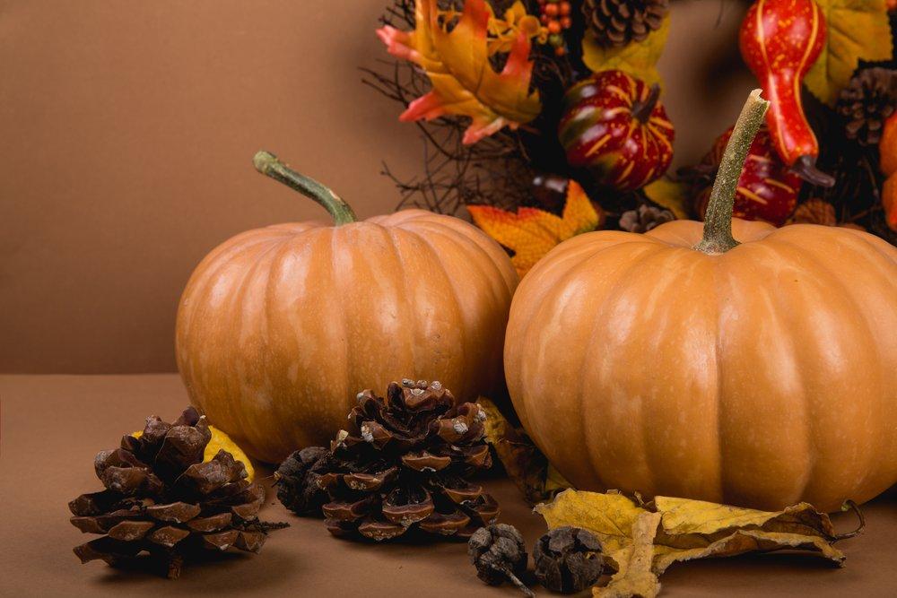 agriculture-autumn-background-619422.jpg